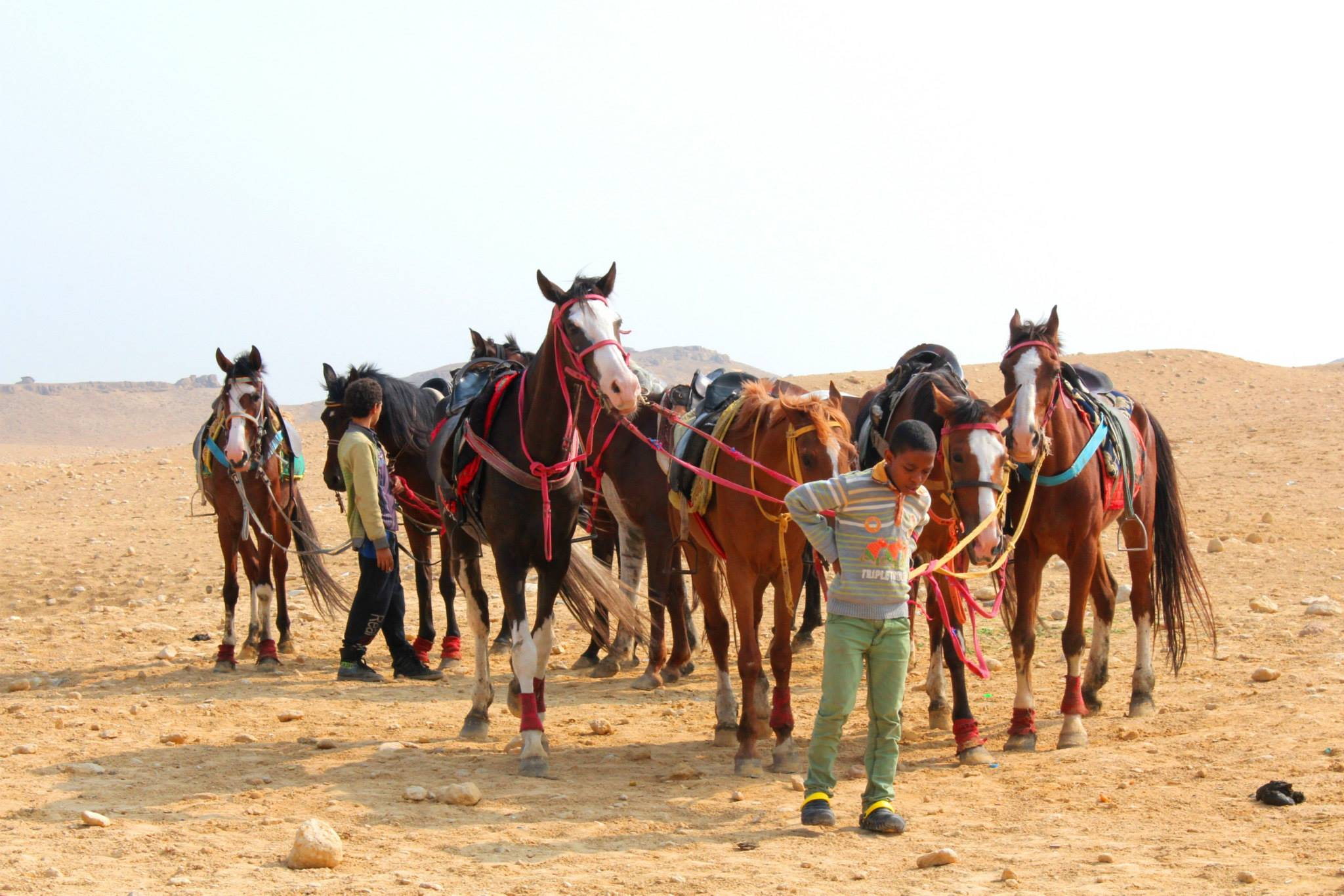 pyramids tour horseback riding
